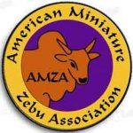 AMZA color patch